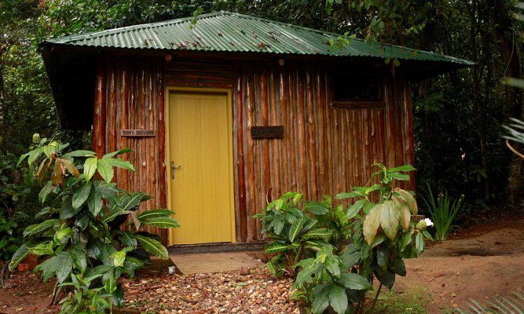Bwindi Guest House