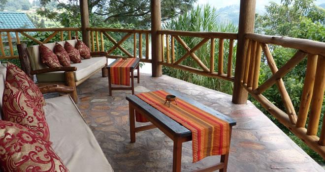 Bwindi Jungle View Lodge