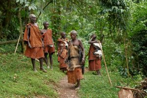 batwa pygmies