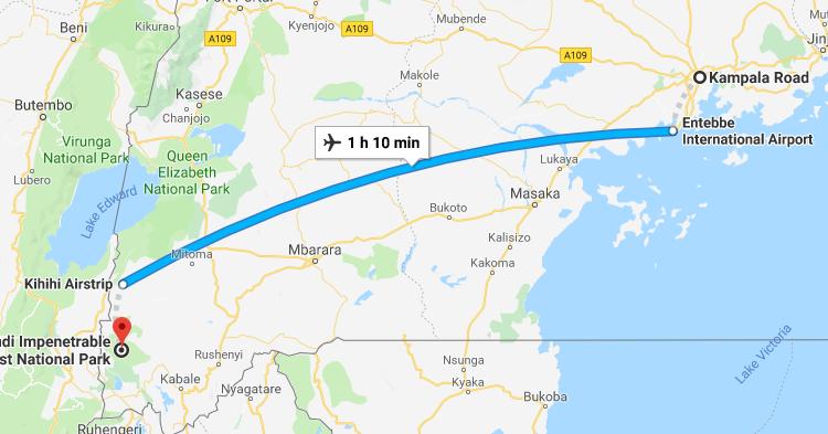 Kampala to Bwindi