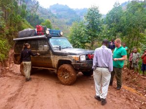 gorilla-trekking-during-rainy-seasons