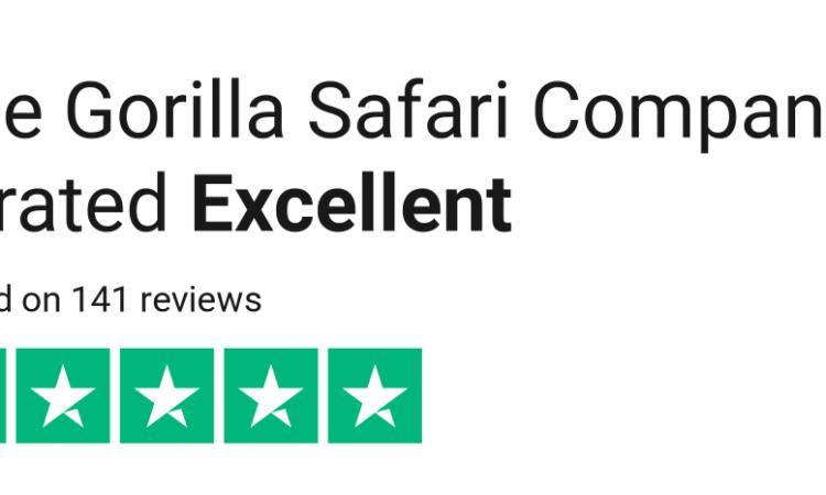 Gorilla safari company review