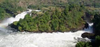 14 Days Best of Uganda, Rwanda, and Congo