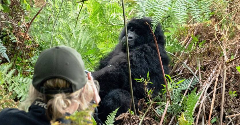 2022 Activities in Bwindi impenetrable national park